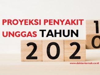 Proyeksi Penyakit Unggas 2021